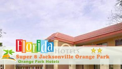 Photo of Super 8 Jacksonville Orange Park – Orange Park Hotels, Florida